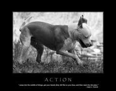 free-dog-art-thumb01.jpg